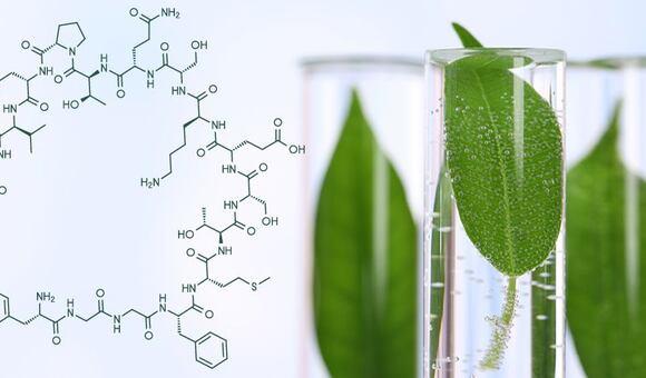 Jedinečné Molekuly. Objevte sílu balíčků přírodní kosmetiky ESSERE